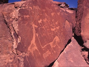Twijfelfontein - gravures van Bosjesmannen