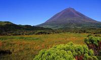 Vulkaan pico Azoren