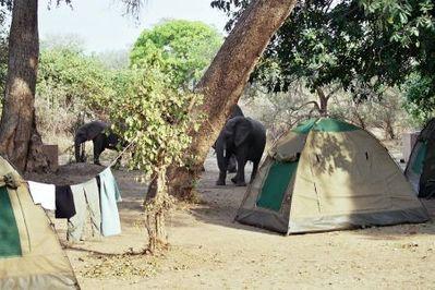 Afrika tenten kamperen Djoser