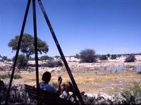 Etosha Nationaal Park Namibie Selfdrive Family Djoser