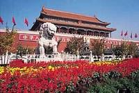 Verboden Stad Beijing China Groepsreis Junior