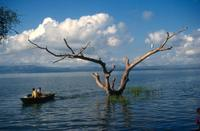 Lake Chamo Ethiopië Djoser