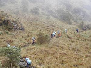 Onderweg op de Inca Trail