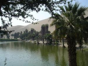 De oase van Huacachina