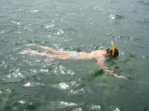 Snorkelen bij het eiland Colon