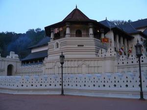 Tempel vd tand