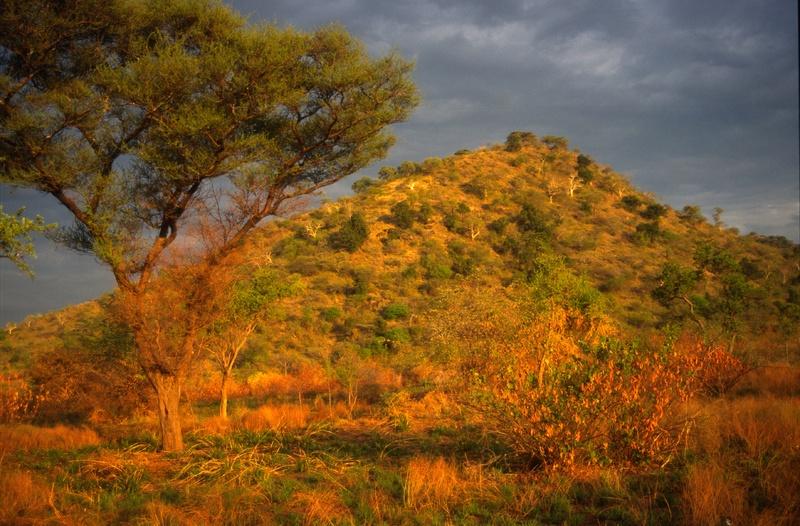 Omovallei - Mago nationaal park