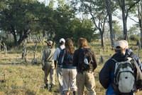 Zuid Afrika Krugerpark gamewalk Djoser