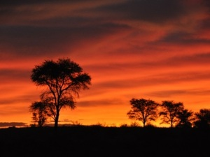 Zonsondergang bij Oranjerivier