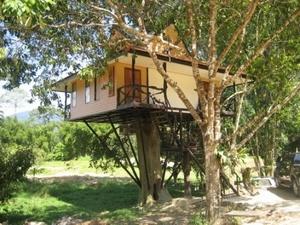 wat dacht je van slapen in een boomhut in Thailand