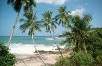 Strand Sri Lanka Djoser