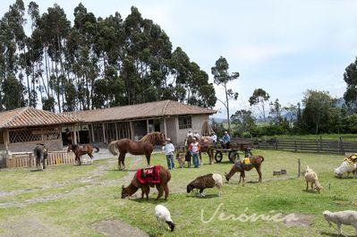Ecuador en galapagos excursie Djoser