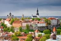 Talinn Estland Stad