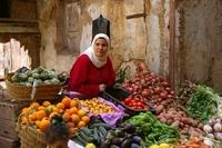 Marokko markt fes Djoser
