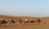 Kamelentocht Sahara woestijn Marokko