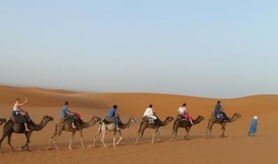 Marokko Kamelenrit Erg Chebbi Woestijn