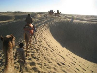 India, Nepal en Rajasthan excursie kamelen rondreis Djoser