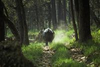 Witte neushoorn Chitwan Djoser