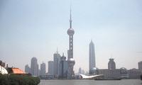 Shanghai skyline China Djoser