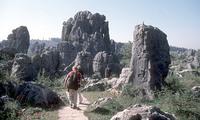 Stenen woud Kunming China en Tibet Djoser