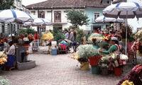 Bloemenmarkt Cuenca Ecuador Djoser