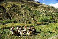 Keylong Ladakh India Djoser