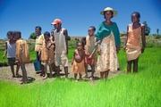 Madagaskar Ambositra Djoser