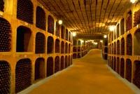 Moldavie Wijnkelder Cricova Djoser