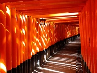 Fushimi Inari-tempel Kyoto Japan Djoser