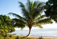 Ile Sainte Marie Madagaskar Djoser