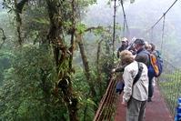 Costa Rica Monteverde mensen op brug Djoser