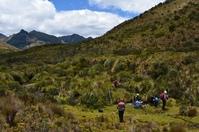 berglandschap Ecuador