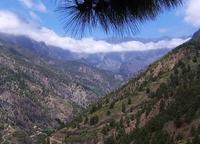 La Palma bergen