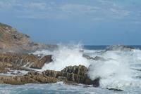 Plettenberg Bay Zuid-Afrika Djoser