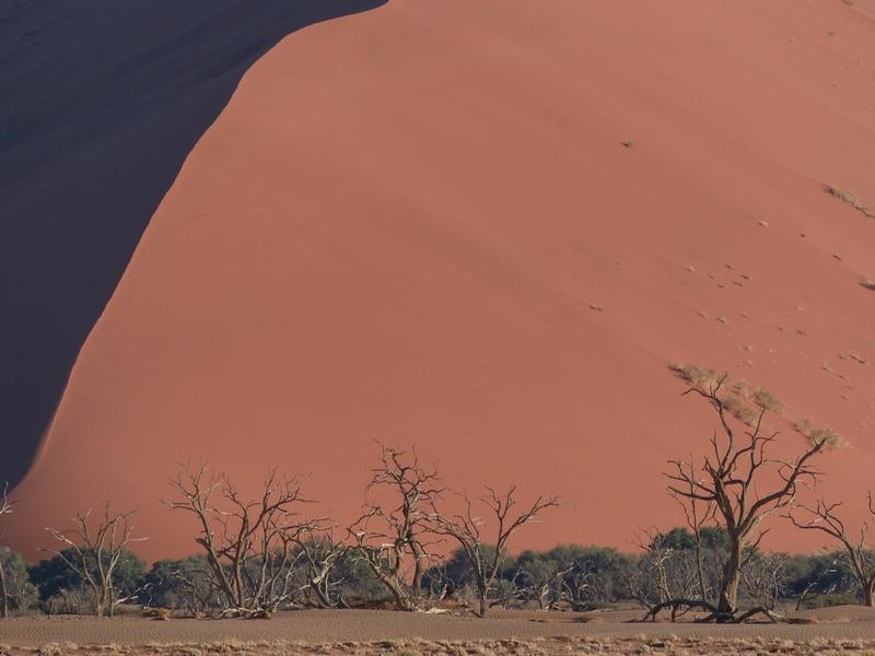 Zandduinen - Namib Naukluft