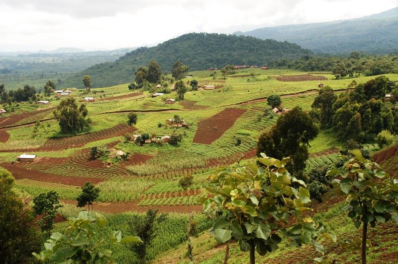 15 - Congo - Virunga