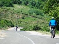 wandel fiets reis Codru reservaat rondreis Djoser