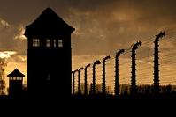 Auschwitz-Birkenau Djoser Polen