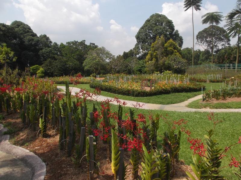 Kuala Lumpur - Park