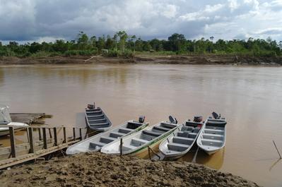 maleisie borneo kinabatangan rivier boot Djoser