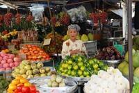 Vietnam Fietsreis Fruit Verkoopster Djoser