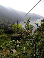 Wandelreis Italie Cinque Terre Boomgaard kust