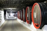 Wijnkelder Cricova Moldavie