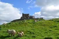 Rock of Cashel Ierland