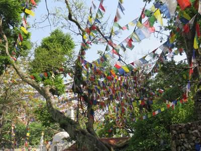 Nepal met trekking