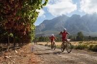 Fietsreis Zuid-Afrika Durbanville Fiets Wijngebied