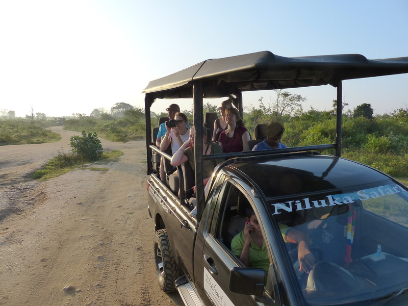Yala nationaal park - jeep