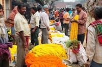 Bloemenmarkt/flowermarkt Calcutta/Kolkata India Djoser