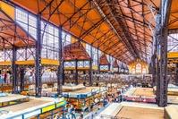 Grote markt hal Boedapest Hongarije