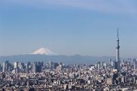 Tokyo Mt. Fuji Japan